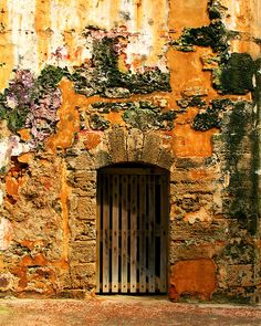 Rustic Fort Door - Photography by Perry Webster