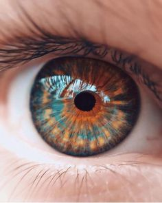 Ideas Eye Color Heterochromia For 2019 Beautiful Eyes Color, Stunning Eyes, Pretty Eyes, Cool Eyes, Eye Close Up, Realistic Eye Drawing, Aesthetic Eyes, Aesthetic Art, Photos Of Eyes