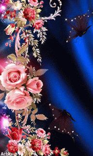 Beautiful Flowers Wallpapers, Beautiful Rose Flowers, Beautiful Nature Wallpaper, Beautiful Gif, Amazing Flowers, Rose Flower Wallpaper, Flowers Gif, Butterfly Wallpaper, Butterfly Pictures