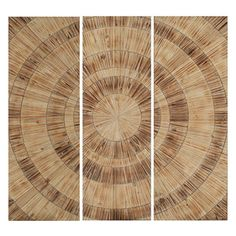 Paragon Decor - Nature's Circles Set of 3 - Wood panels feature ridged rings surrounding a circular focal point.