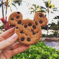 Disney Snacks, Disney Food, Cute Disney, Disneyworld Food, Best Disney World Food, Comida Disney, Disney Parque, Disney Cookies, Food Wishes