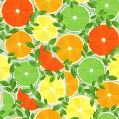 A Slice of Citrus - Large fabric by wildnotions on Spoonflower - custom fabric Shiny Fabric, Love Your Home, Pattern Illustration, Designer Pillow, Decorative Pillow Covers, Custom Pillows, House Warming, Throw Pillows, Lumbar Pillow
