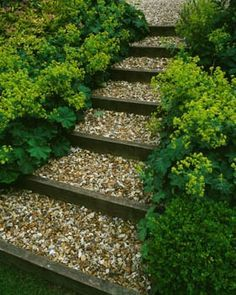 Sleepers and pebble stairs softened with low growing plants