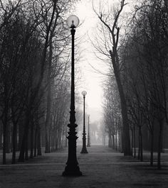 Michael Kenna - Tuileries Gardens, Study 4, Paris, France, 1987 | From a unique collection of black and white photography at http://www.1stdibs.com/art/photography/black-white-photography/