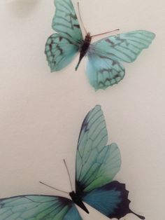 4 Luxury Amazing Teal Blue Butterflies 3D by MyButterflyLove, $12.50