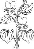 This interesting flower would make for great coloring fun for your kids at home, in the classroom, or anywhere else kids love to color. Our FREE printable coloring pages are a great way for your little ones to express their creativity! Monster Coloring Pages, Fall Coloring Pages, Alphabet Coloring Pages, Flower Coloring Pages, Coloring Pages For Kids, Colouring Sheets, Kids Coloring, Open Office, Inside Out Coloring Pages