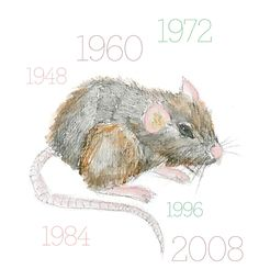 Year of the Rat - My little Kaycee girl - 2008 Rat baby My Astrology, Chinese Astrology, Year Of The Dragon, Year Of The Rat, Chinese Zodiac Rat, Virgo Images, Earth Signs, Meeting New People, What Is Life About