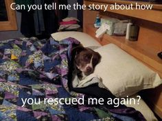 Or how I rescued you!!!