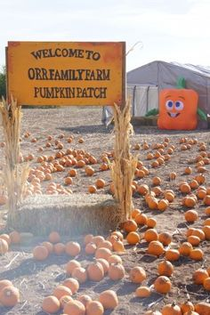 Orr Family Farm in Oklahoma City, OK - zip line, train, petting zoo, food, party venue