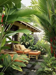 LifeWall on May 11 2020 plant tree and outdoor Tropical Backyard Landscaping, Tropical Garden Design, Tropical Houses, Backyard Patio, Tropical Patio, Landscaping Ideas, Outdoor Rooms, Outdoor Gardens, Outdoor Living
