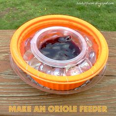 Silo Hill Farm: MAKE AN EASY ORIOLE FEEDER! Using recycled plastic you would toss & an inexpensive food source too! Great idea! ****