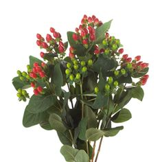 Premium wedding flowers from the finest U.S. growers, Wholesale Flowers by the bunch or the case no minimum order. Nationwide to your door delivery. Visit http://www.weddingflowersofamerica.com for more details