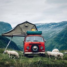 Let's Go Camping! - Outdoor Camping Tips Camping Ideas, Camping Car, Camping Life, Camping Friends, Camping Store, Camping Trailers, Camping Survival, Volkswagen Bus, Vw T1
