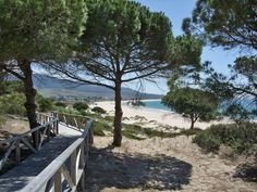 Dunes of Bolonia- Tarifa  Spain- wonderful place to hike or stroll