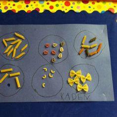 Oodles of noodles: sorting noodles. A preschool project.