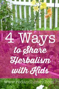 4 ways to share herbalism with kids