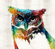 Colorful Owl Art - Wise Guy - By Sharon Cummings by Sharon Cummings #owls