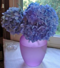 Endless summer hydrangea blooms (My mom gets them to grow blue.)