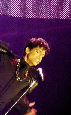 Prince ●