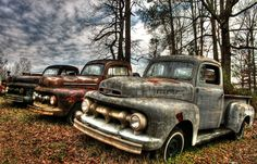 Rusting  old Fords