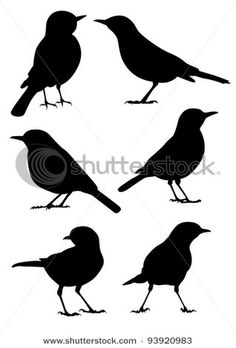 Find Birds Silhouette 6 Different Vector Illustrations stock images in HD and millions of other royalty-free stock photos, illustrations and vectors in the Shutterstock collection. Vogel Silhouette, Animal Silhouette, Silhouette Vector, Bird Outline, Bird Stencil, Damask Stencil, Vector Art, Vector Illustrations, Painting Art