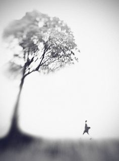 Morning Song, photography by Hengki Lee. Bokeh, zoom, and slow shutter. Fine Art Photography, Landscape Photography, Abstract Photography, Morning Songs, Photo D Art, Out Of Focus, Minimalist Photography, Pretty Pictures, Black And White Photography