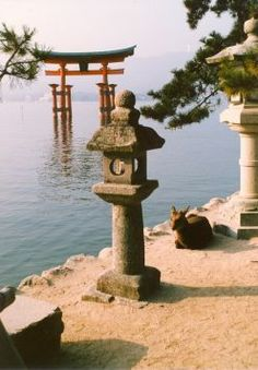 """The famous """"Floating Torii"""" of Miyajima. Places To Travel, Places To See, Travel Around The World, Around The Worlds, Tens Place, Japan Picture, Miyajima, Japan Travel Guide, Visit Japan"""
