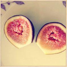 French Brown Turkey fig