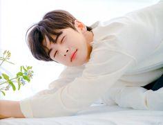 Cha Eunwoo Astro, Astro Boy, K Pop, Astro Kpop Members, Lee Dong Min, Ulzzang Korea, Ong Seongwoo, Cha Eun Woo, Cute Faces
