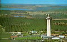 Aerial View Citrus Tower  located on U.S. Highway 27 at Clermont, Florida.  Elevator to the observation deck, 542 feet above sea level, where visitors may view numerous beautiful lakes and hills and thousands of acres of citrus groves.