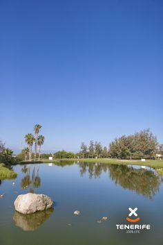 Tenerife, Canary Islands, Costa, Golfers, Golf Courses, Vacation, Tourism, Canarian Islands, Teneriffe