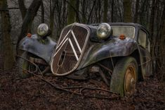 These seemingly abandoned vintage cars photographed in a forest feature historic racing cars and rusting vehicles bearing the distinctive Iron Cross. Old Vintage Cars, Old Cars, Antique Cars, Vintage Ideas, Art Deco Car, Citroen Traction, Traction Avant, Rusty Cars, Abandoned Cars