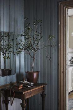 🌟Tante S!fr@ loves this📌🌟Hal tafeltje decoreren ✦ Keulse pot met plant ✦ sober wonen Living Etc, Color Tile, Home Decor Inspiration, Decoration, Home And Family, Sweet Home, New Homes, House Design, Farmhouse Bathrooms