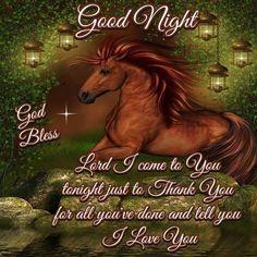 Good Night Everyone, God Bless You! Good Night Greetings, Good Night Wishes, Good Night Sweet Dreams, Good Morning Picture, Good Morning Good Night, Morning Pictures, Night Time, Good Night Family, Good Night Everyone