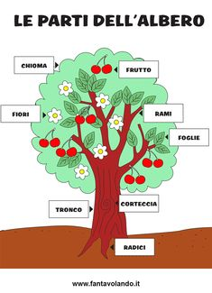 Italian Language, I School, Pixel Art, Homeschool, Science, Activities, Education, Learning, Cards