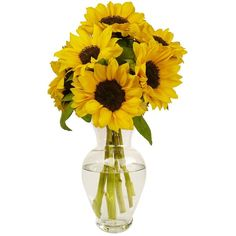 7 stem Yellow Sunflowers, With Vase (44 AUD) ❤ liked on Polyvore featuring home, home decor, vases, yellow home accessories, yellow vase, yellow home decor and stem vases