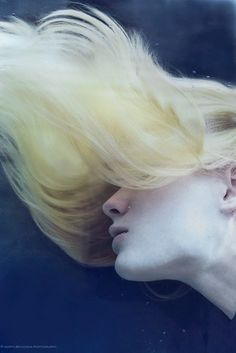 aquarium by Marta Bevacqua - Photo 120371647 - 500px
