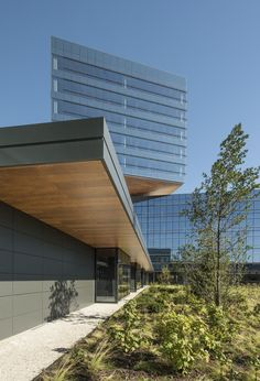 Zurich Insurance Group North American Headquarters. Goettsch Architects; interior architect CannonDesign.