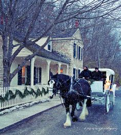 winter carriage ride....
