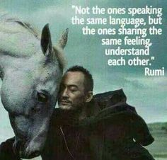 The ones sharing the same feeling - Rumi Rumi Quotes, Spiritual Quotes, Wisdom Quotes, Life Quotes, Inspirational Quotes, Socrates Quotes, Compassion Quotes, Connection Quotes, Rumi Poetry
