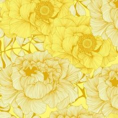 Rose Flower Yellow Wallpaper