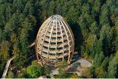 Neuschonau, Bavaria- The world's longest tree-top walk. It's 1300 meters and goes 25 meters above the tree tops.