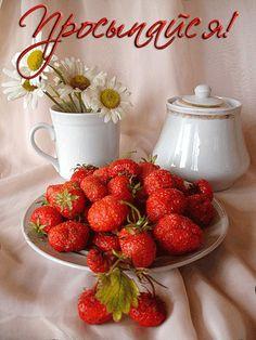 Доброе утро надписи (19 фото) Birthday Greeting Message, Birthday Greetings, Raspberry, Strawberry, Good Night Messages, Thanks Card, Good Morning Gif, Gifs, Clever Quotes