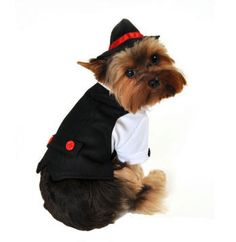 John Dawggie watch out there is a new gangster in town. Two piece gangster dog costume, includes black pinstriped suit vest with red neck tie and adjustable drawstring fedora hat. Easy to wear front closure.