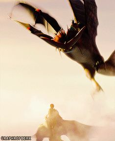 I honestly think this is the most visually striking scene in the whole movie, except maybe for when Hiccup first meets the Bewilderbeast
