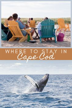 Best Places to Stay in Cape Cod: The top Cape Cod Hotels, Inns & Resorts - Valentina's Destinations Luxury Travel, Travel Usa, Cape Cod Hotels, Harbor Hotel, North America, Latin America, Travel Guides, Travel Tips, Top Travel Destinations