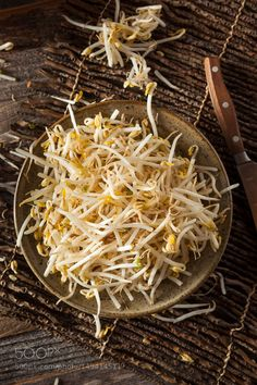 Pic: Raw Healthy White Bean Sprouts