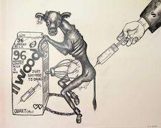 Bovine Growth Hormone Graphite and crayon on Strathmore Bristol board. Stop Animal Cruelty, Animal Testing, Sue Coe, Vegan Memes, Vegan Quotes, Why Vegan, Vegan Animals, Vegan Lifestyle, Animal Rights