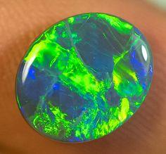 BLACK OPAL LIGHTNING RIDGE SOLID 2.70ct GEM  BOD091016 Black Opals, Australian Opals