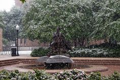 Statue of Stephen F. Austin in snow, Nacogdoches